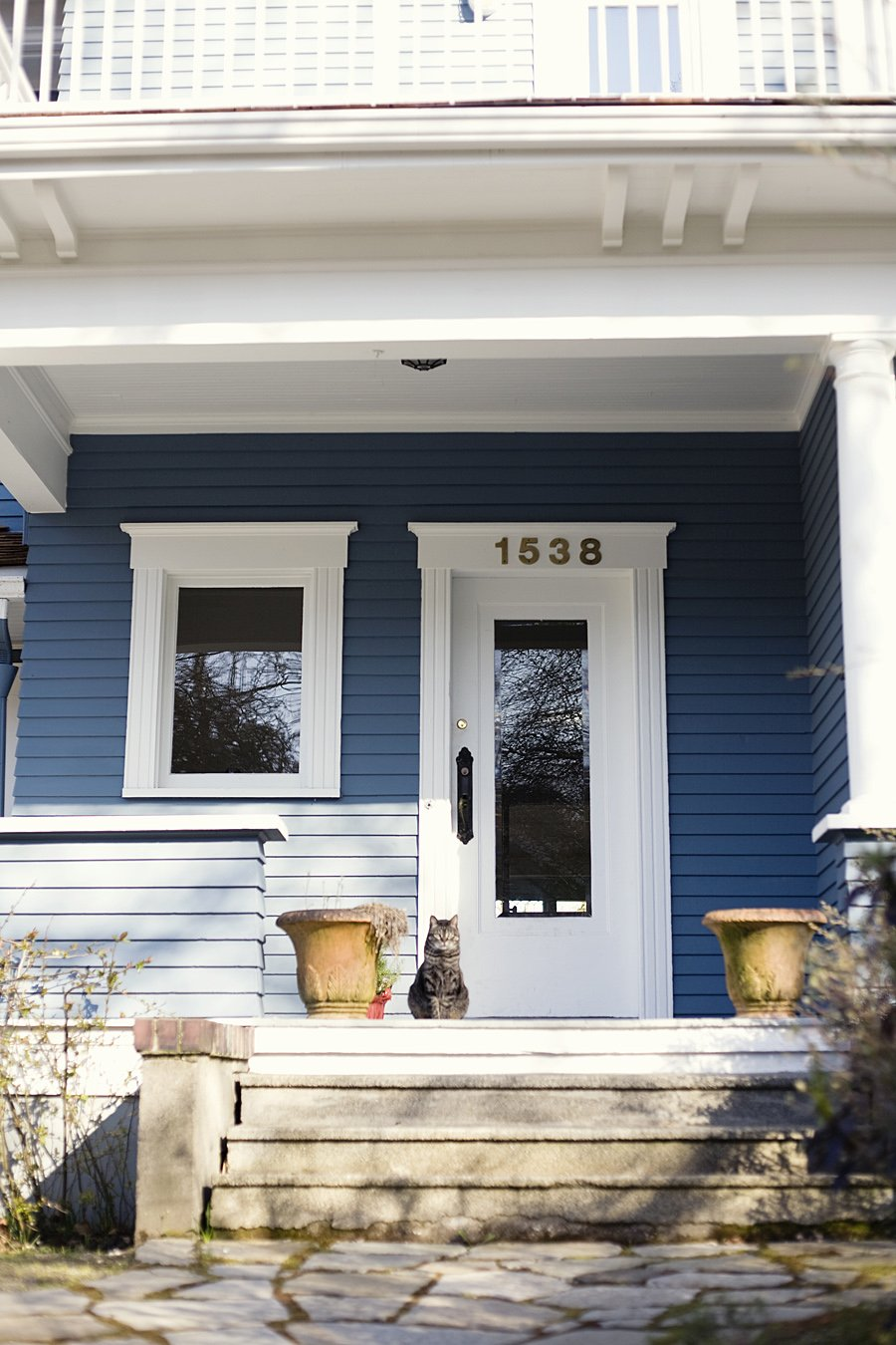 Blue house with cat