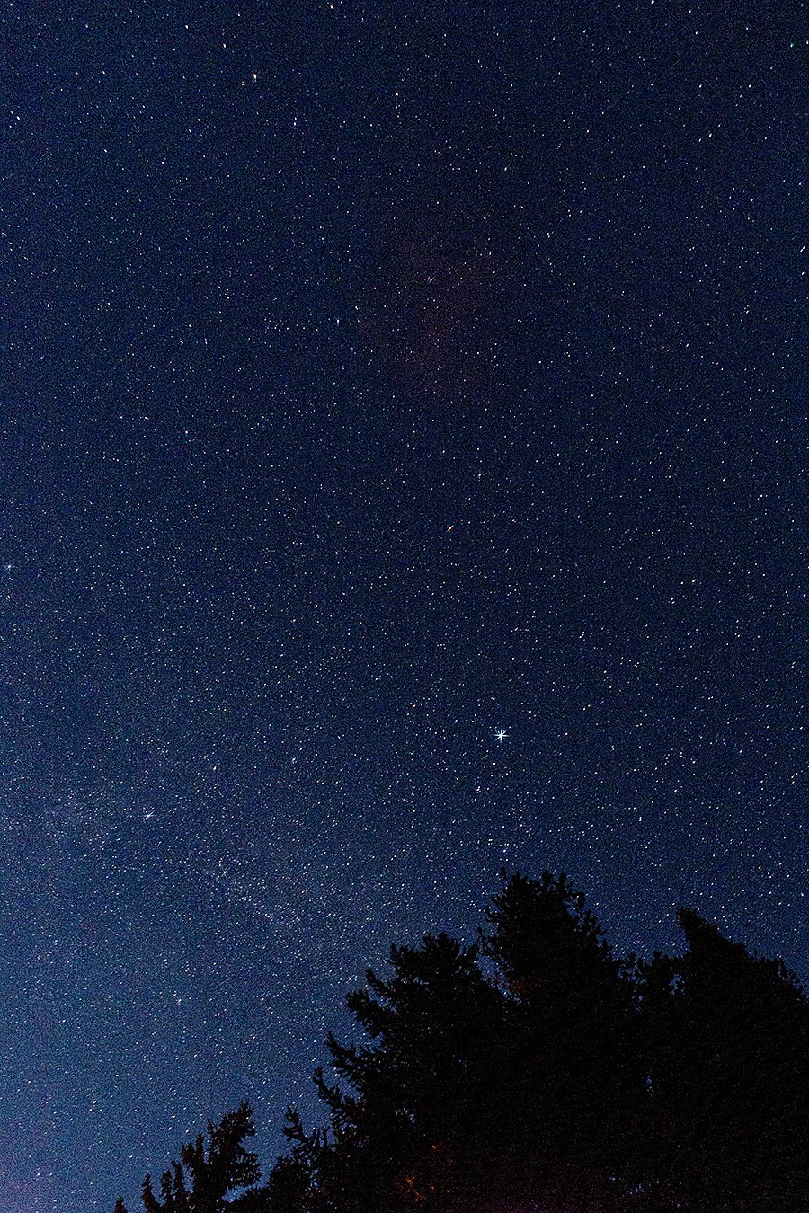 Lindberg Lake Montana Stars