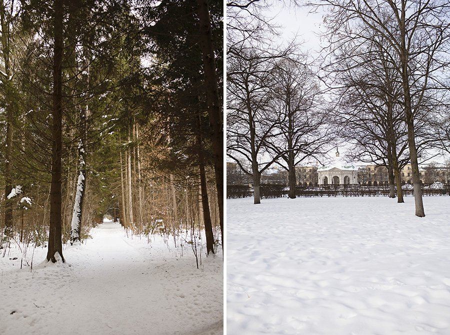 Trees and snow in Munich