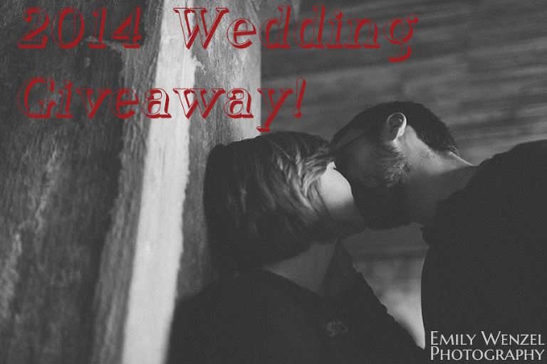 Emily Wenzel Photography 2014 Wedding Giveaway