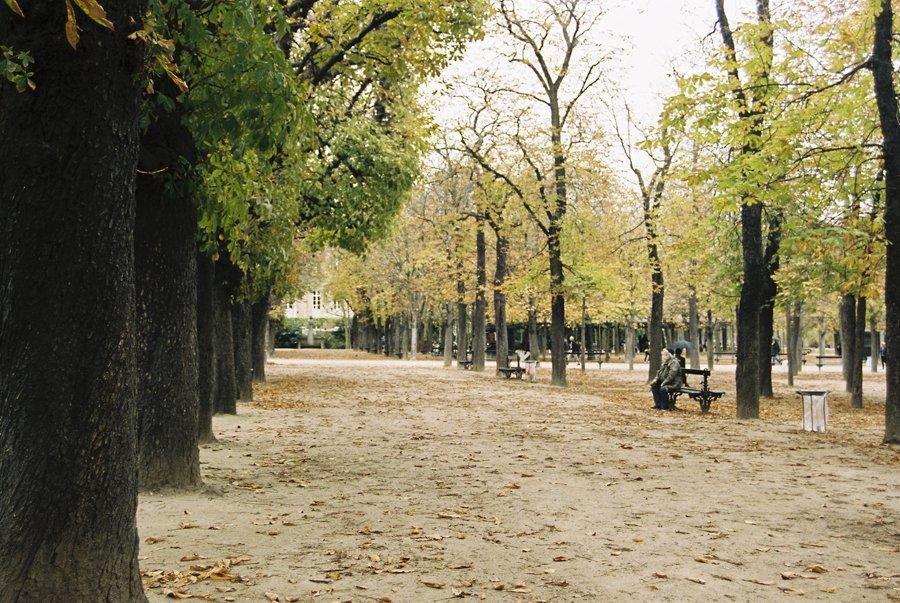 Paris on Film // Emily Wenzel Photography