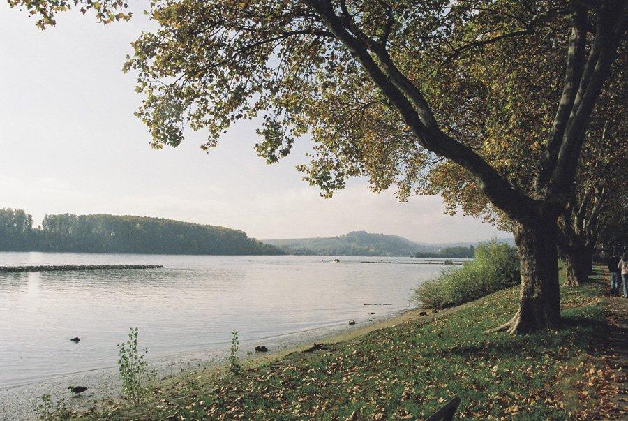 Rudesheim on the Rhine // Emily Wenzel Photography