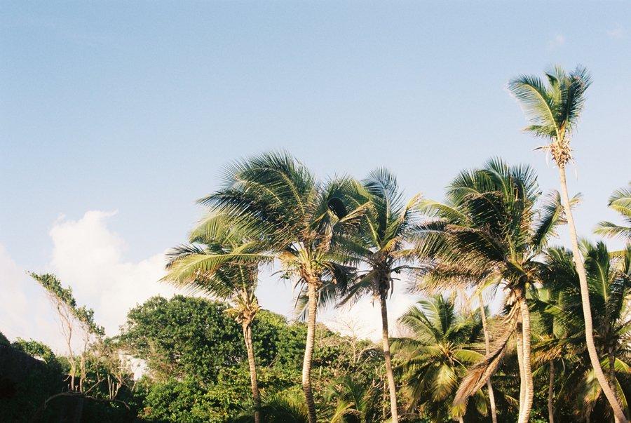 Barbados Destination Wedding // Emily Wenzel Photography