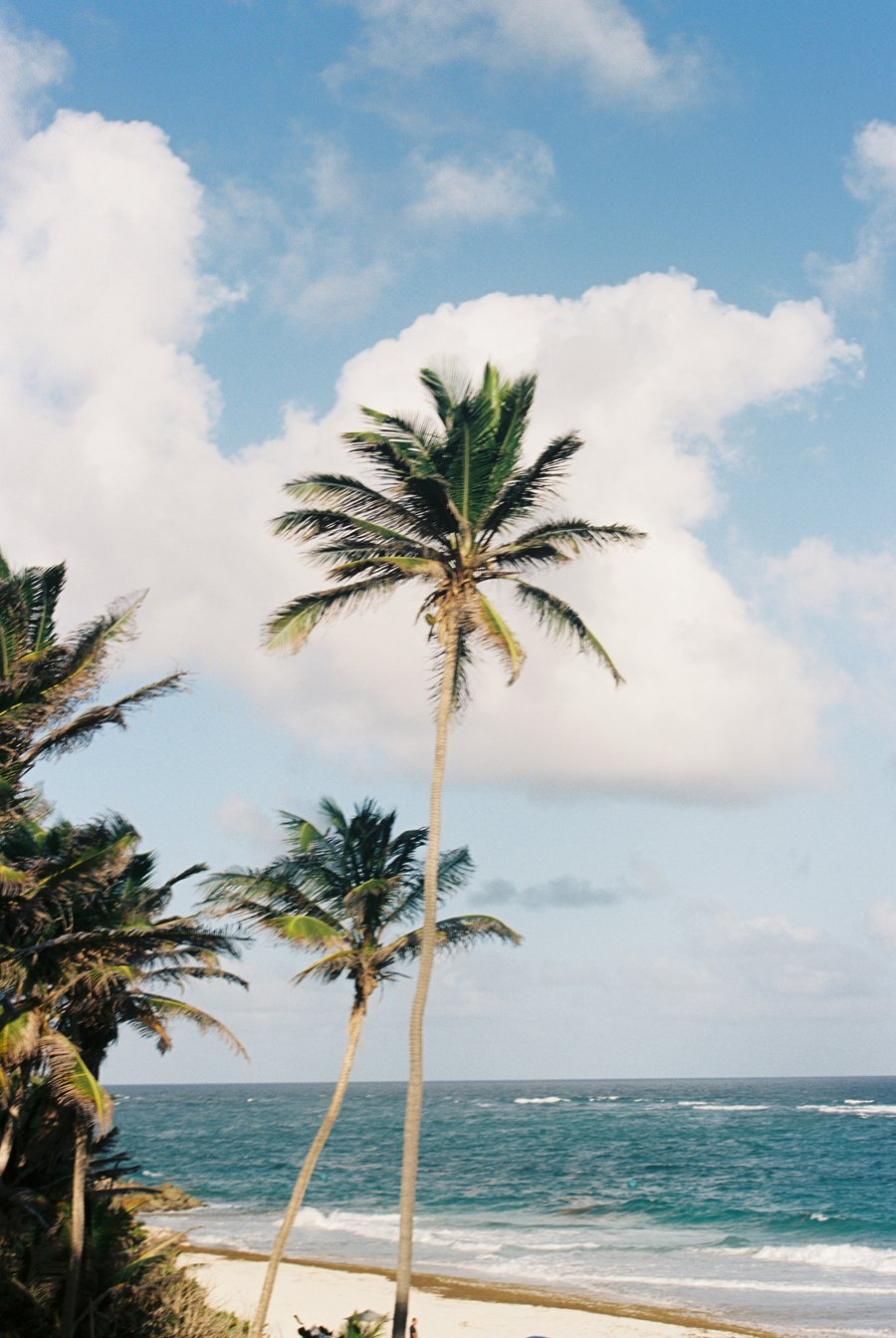 Barbados Destination Wedding // Emily Wenzel Photography