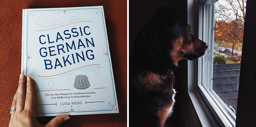 Classic Germany Baking // German Cook Books