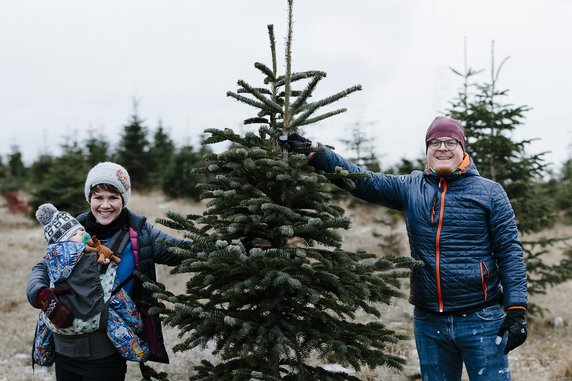 Picking out a tree at Greenbluff Christmas Tree Farm in Spokane Washington