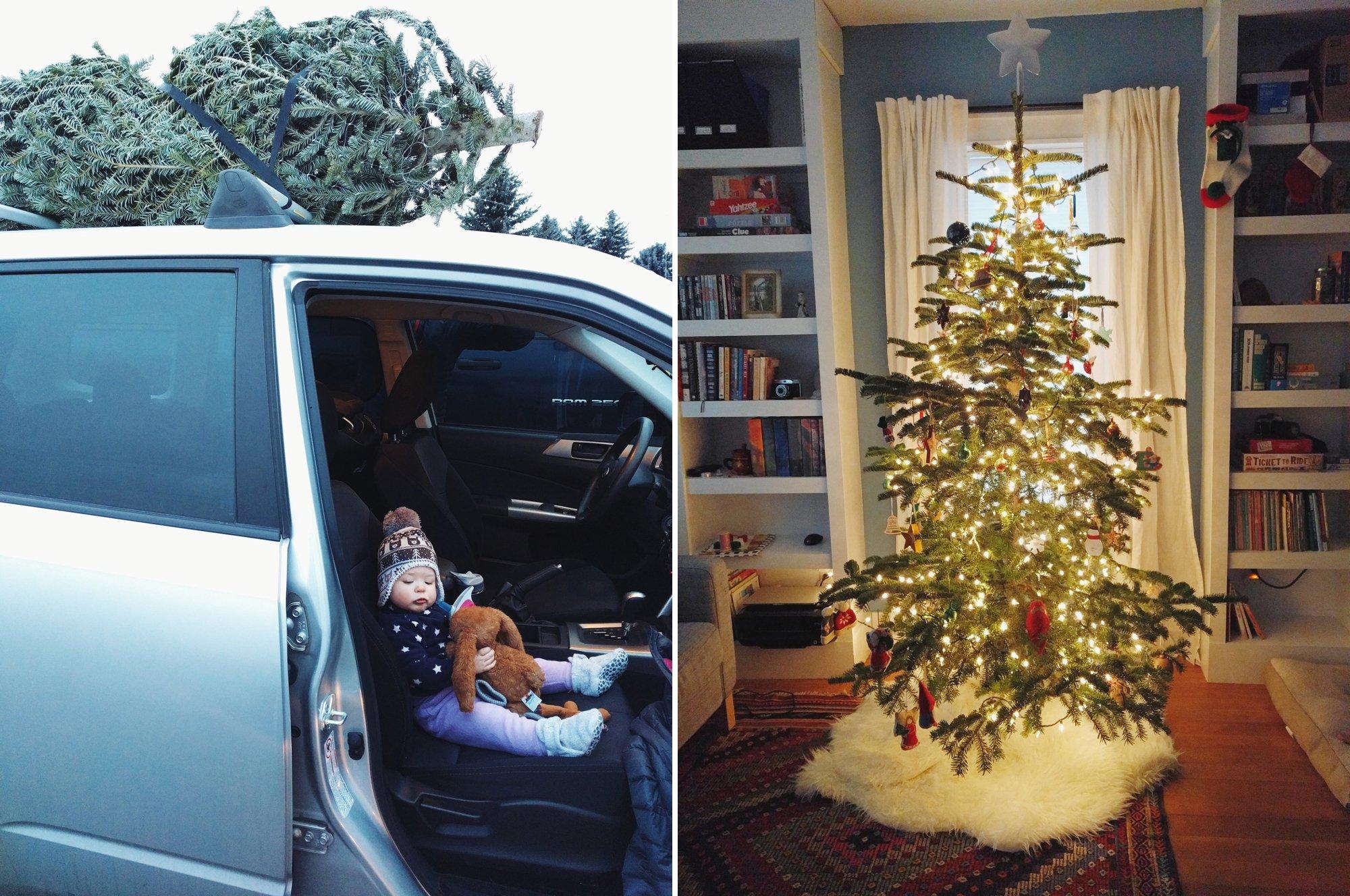 Christmas Tree from Greenbluff Spokane WA