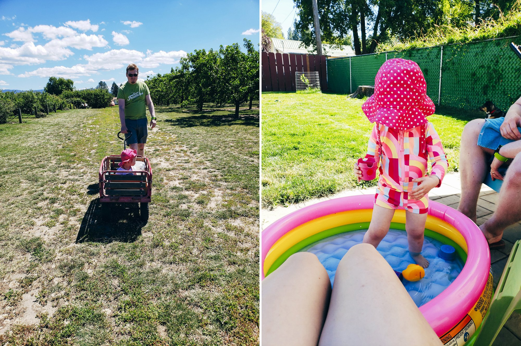 Living in Spokane with a Toddler and Renovating a House