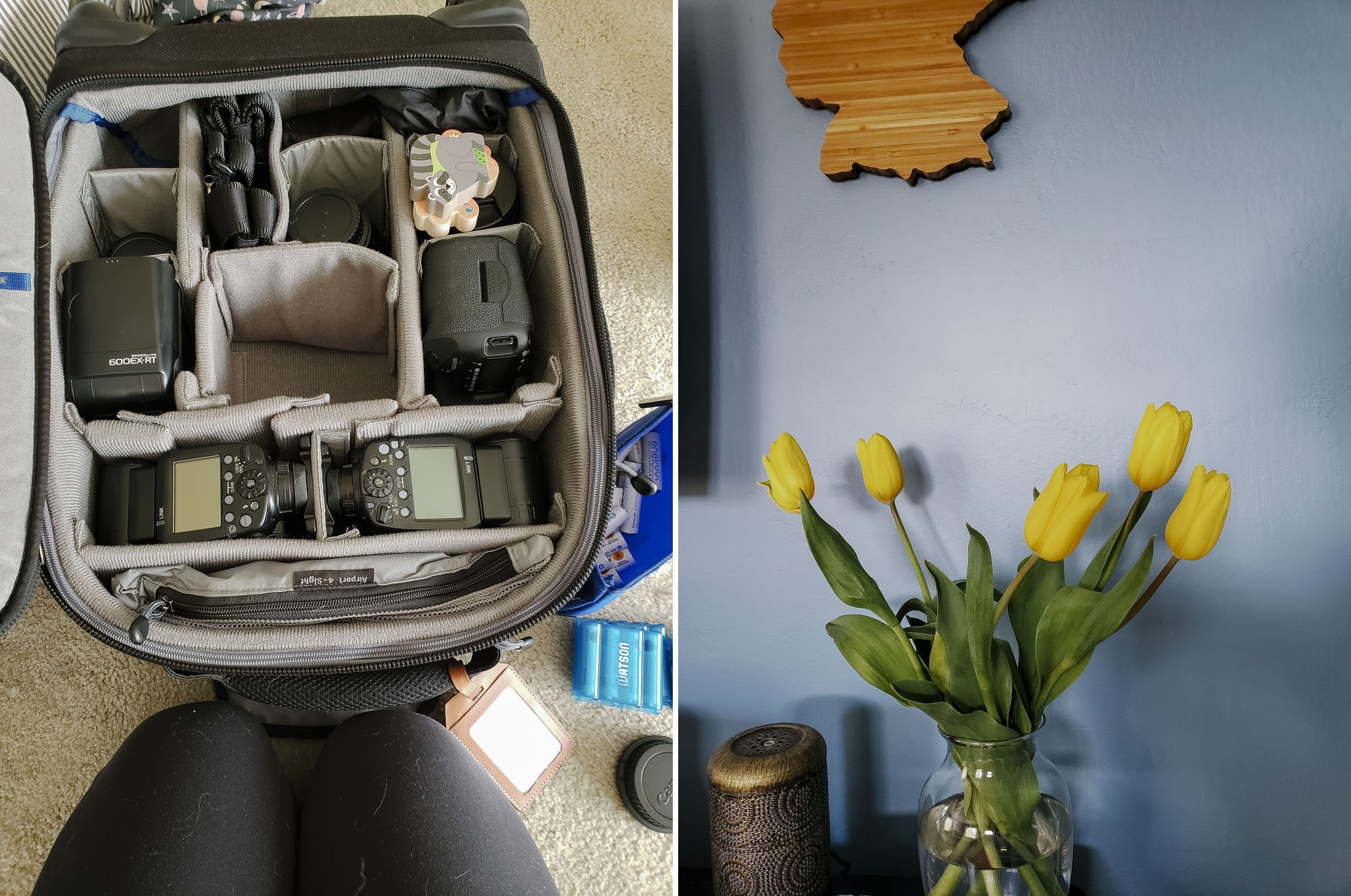 Think Tank Camera Bag // Tulips in Spring